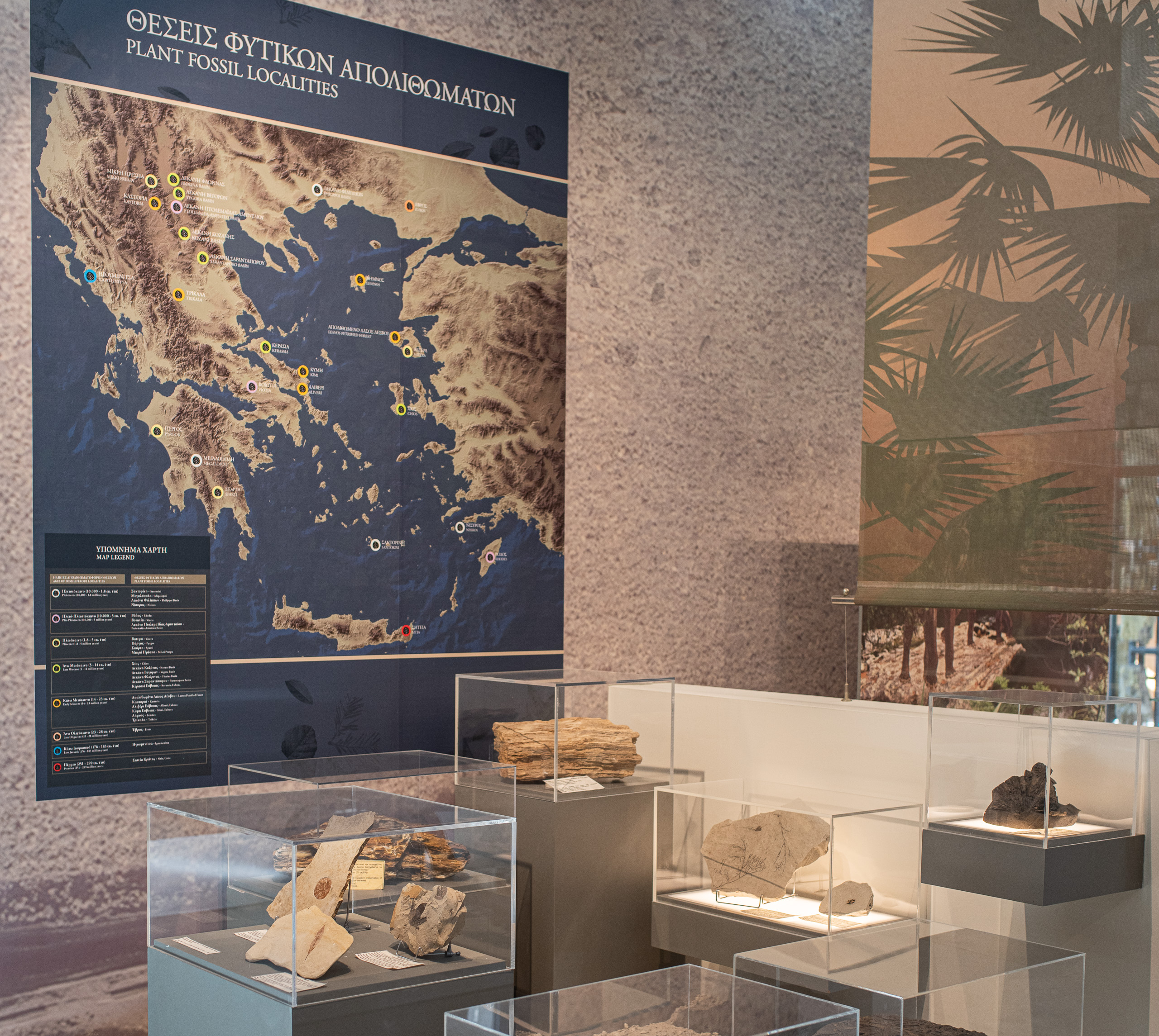 Fossilized plants of Greece